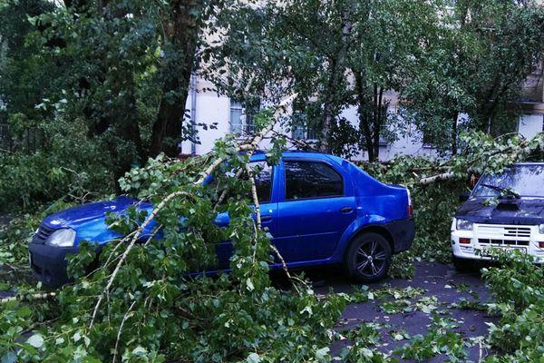 ВМосковском регионе устраняют последствия ночной бури, пострадали семь человек