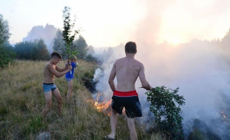 ВРевде четверым подросткам удалось потушить пламя наполе без помощи пожарных