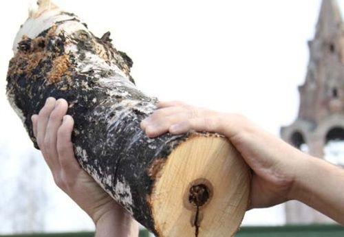 Свердловчанка досмерти забила своего собутыльника поленом