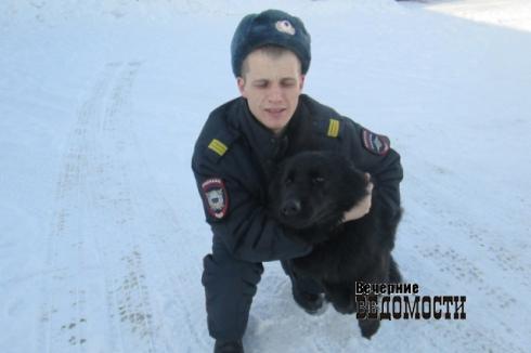 К уральскому вору-домушнику полицейских привела собака Жемчужина