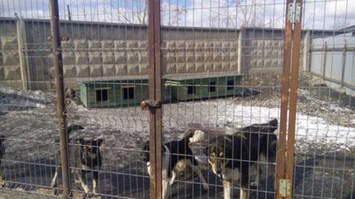 39 млн. руб. скрыл отналоговой управляющий учреждения вНижнем Тагиле