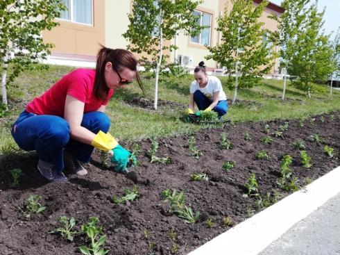 На предприятиях РМК высадили более 46 тысяч деревьев, кустов и цветов