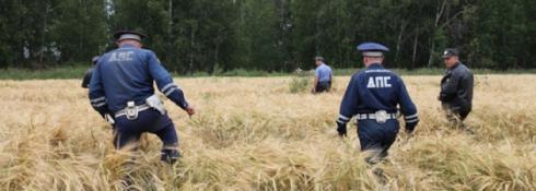 На поиски двух заблудившихся мальчишек-грибников отправились уральские полицейские, сотрудники МЧС и волонтеры