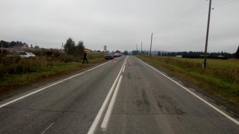 В Свердловской области УАЗ сбил корову и перевернулся. Водитель погиб