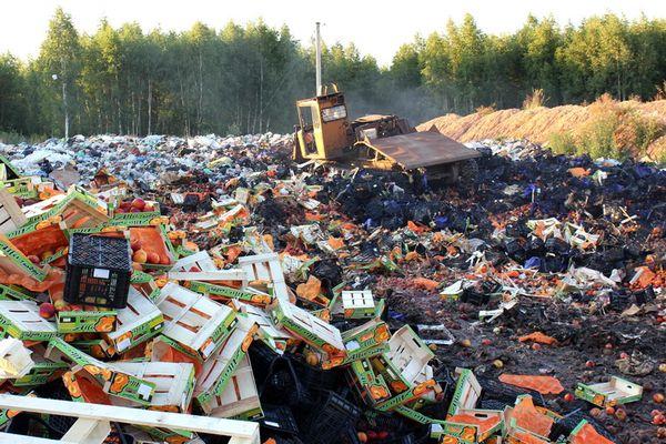 В РФ собственников некачественных продуктов вынудят платить заих разрушение