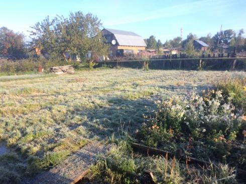 На севере Свердловской области отмечены заморозки