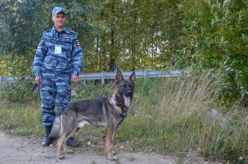В Новоуральске стартовал чемпионат МВД России. В числе участников — 227 собак
