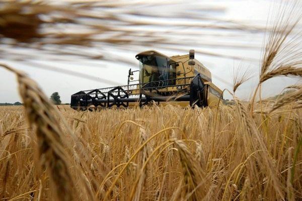 Медведев: в2017 в Российской Федерации предполагается рекордный урожай зерна