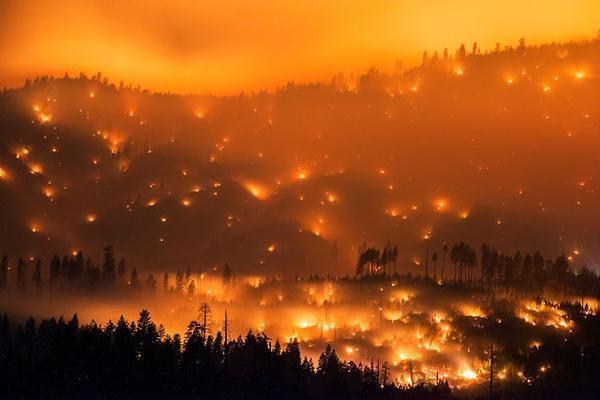 ВКалифорнии число погибших  лесных пожаров выросло до  17 человек