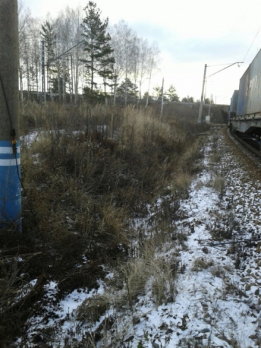 Двое екатеринбуржцев украли 17 коробок зубной пасты и 35 шин из грузового поезда