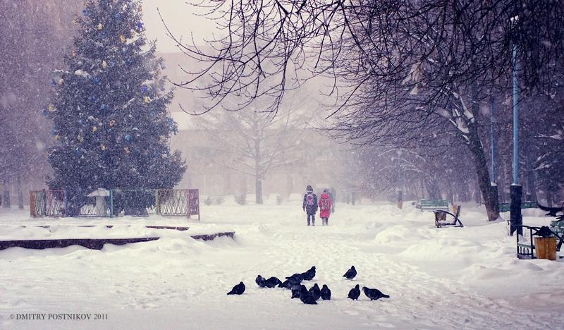 Наследующей неделе вЕкатеринбург придут 20-градусные морозы