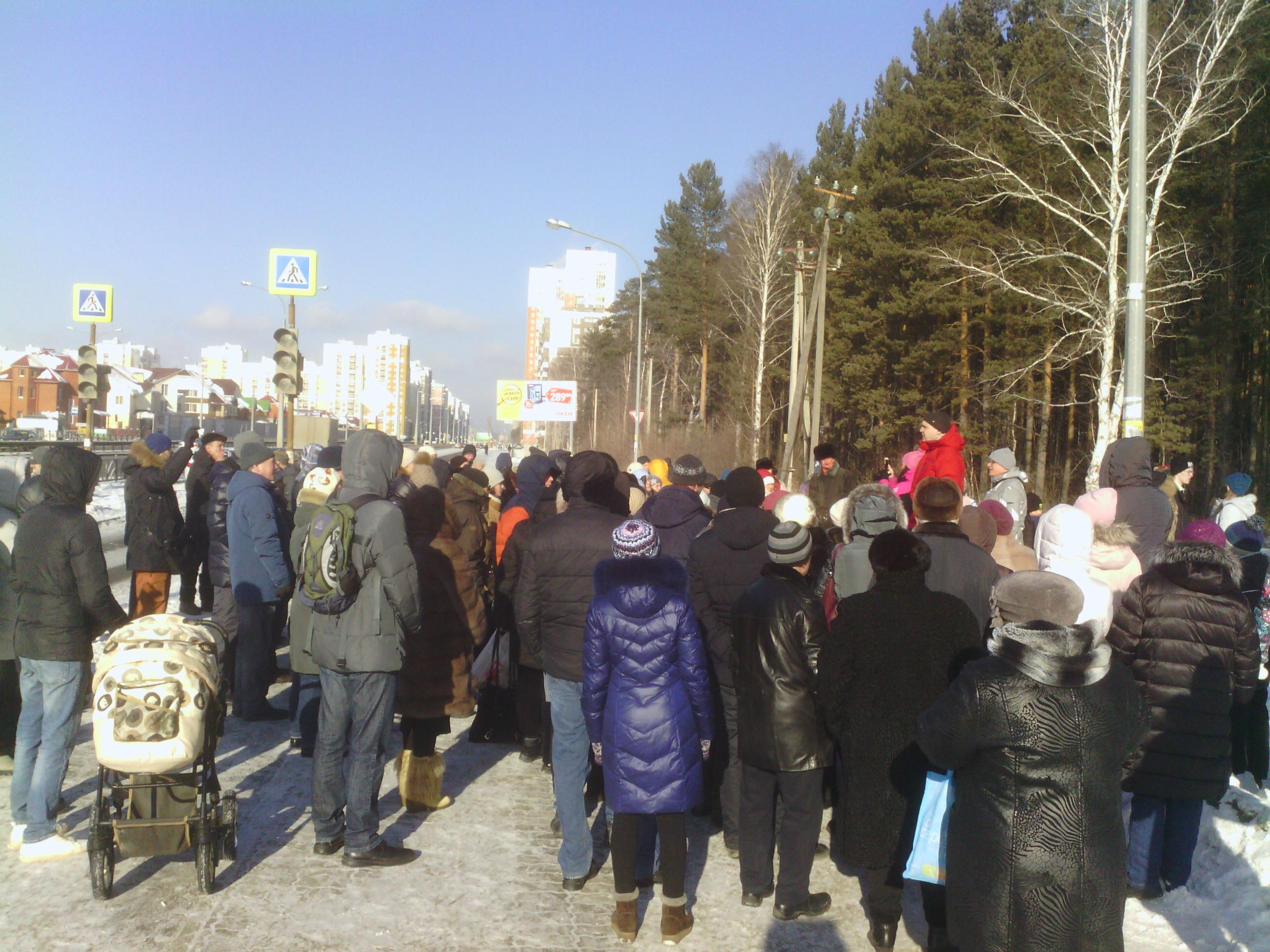 Жители Краснолесья провели флешмоб в защиту березовой рощи (ФОТО)