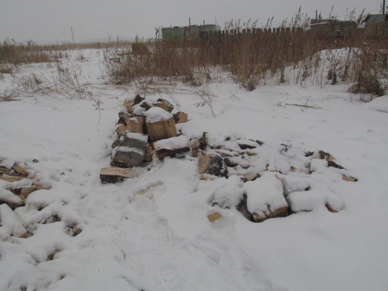 Незаконную рубку леса в особо крупном размере раскрыли полицейские в Петуховском районе
