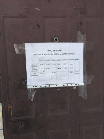 В поселке Валериановск на 7-летнюю девочку упали хоккейные ворота. Ребенок получил травму головы