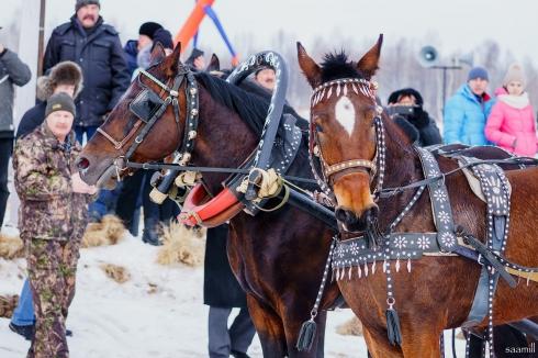 Кушва стала местом проведения ежегодных конно-спортивных соревнований