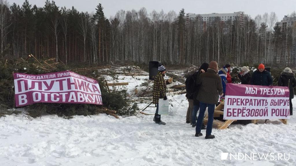 Митингующие в Академическом требуют остановить вырубку леса и отправить в отставку директора АИЖК