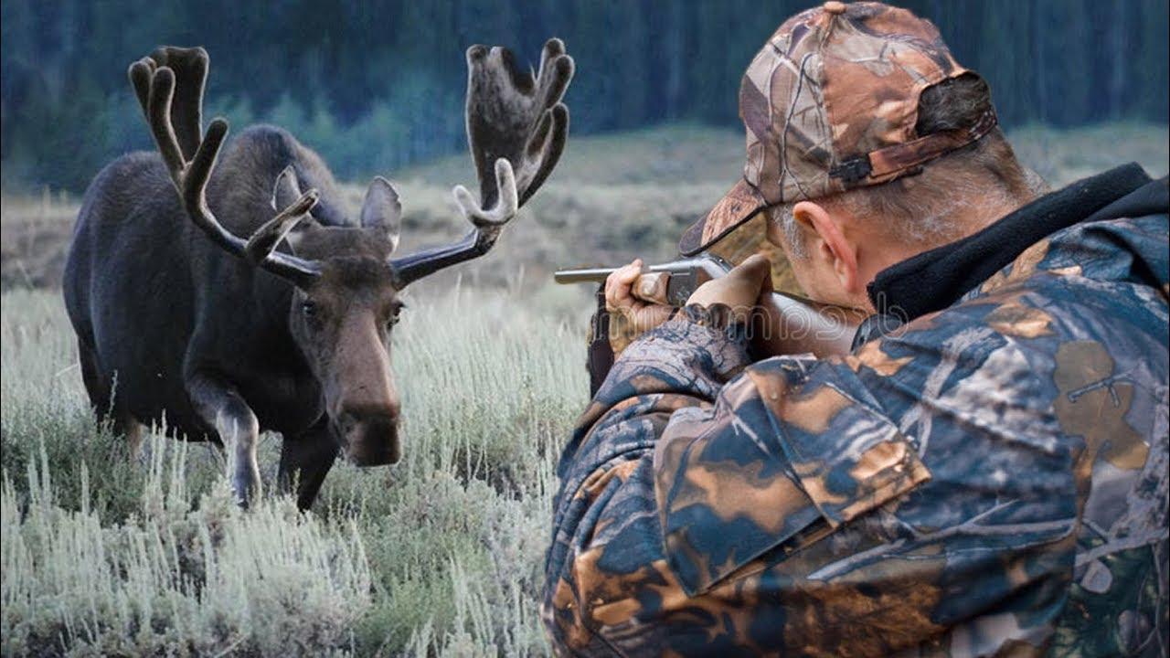 ВБерезовском будут судить браконьера, застрелившего человека вместо лося
