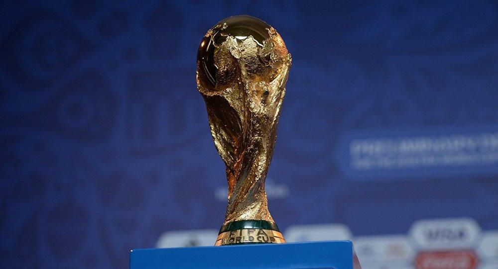 Новосибирцы смогут увидеть Кубок Чемпионата Мира пофутболу