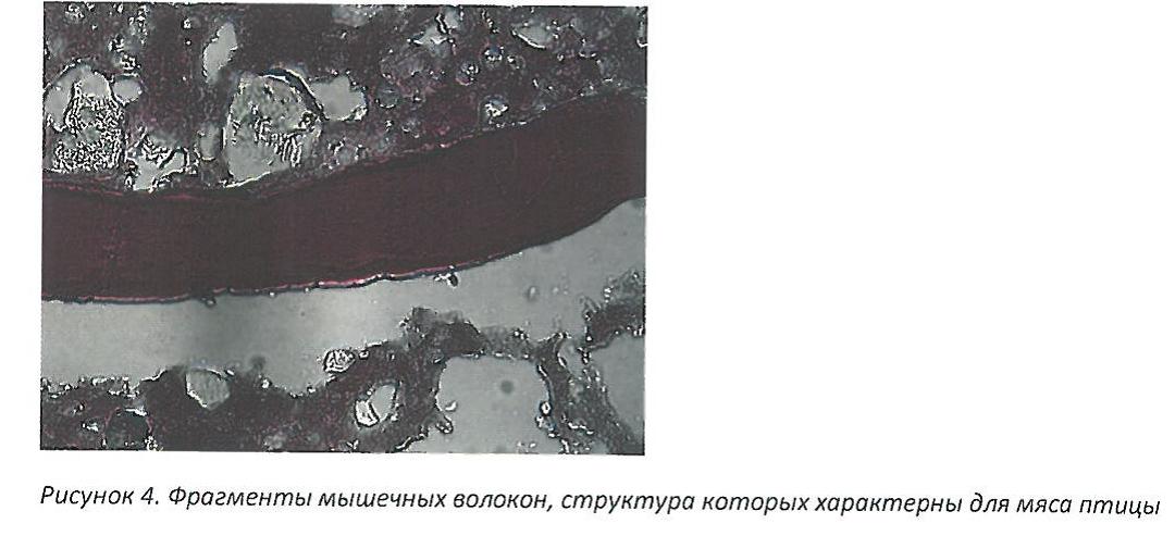 «Новоуральский мясной двор» оштрафовали за «неГОСТовскую» колбасу