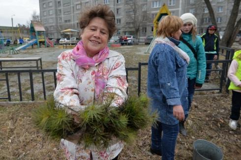 Челябинцам снова бесплатно раздали саженцы хвойных деревьев