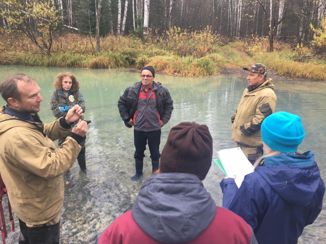 Прокуратура проводит проверку информации о загрязнении рек Тальтия и Ивдель на Урале