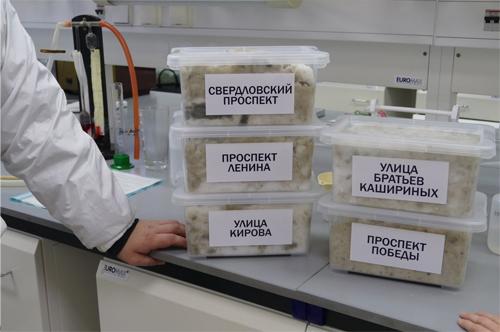 По инициативе Владимира Бурматова химики проанализировали дорожную соль