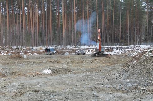 Под Екатеринбургом неизвестные вырубили несколько гектаров леса. Полиция начала проверку