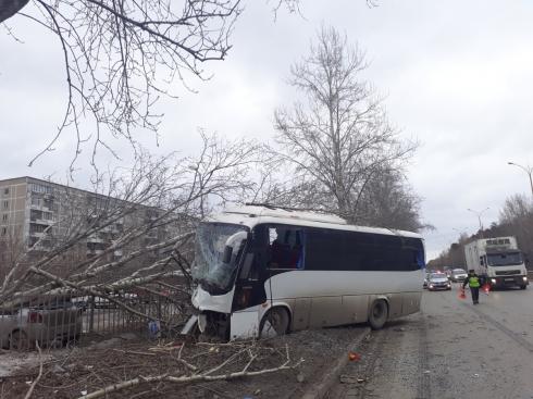 Снес дерево и погиб на месте: в Екатеринбурге на Объездной дороги сегодня произошло ДТП