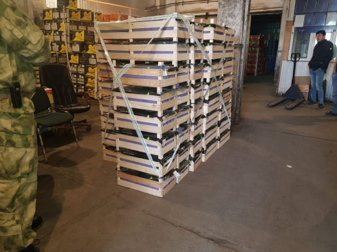 На овощебазе в Екатеринбурге нашли более тонны санкционных груш