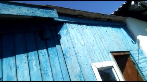 «Мы живем как на помойке! Дышать нечем!» Жителей свердловских поселков терроризируют полчища мух, слетевшихся на куриный помет