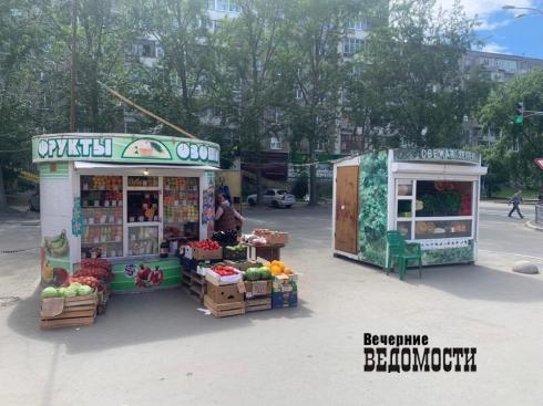 Овощи из-под полы: в Екатеринбурге общественники и журналисты провели рейд по незаконной торговле