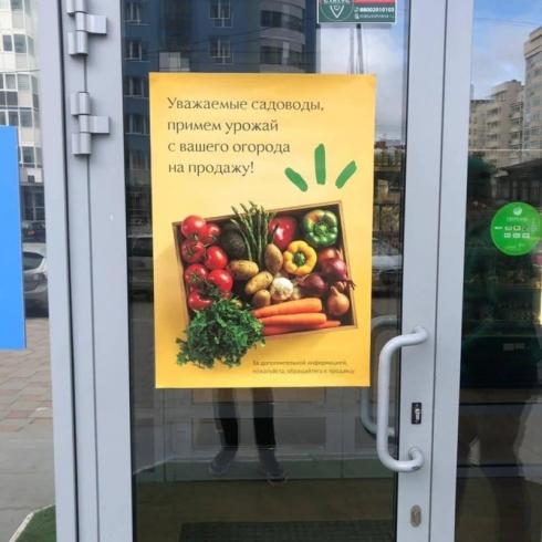 «Чем мы-то хуже?»: уральский бизнесмен предложил пенсионерам продавать в его магазине урожай