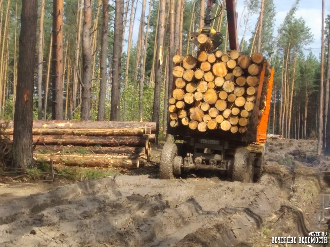 Уральская резня бензопилой