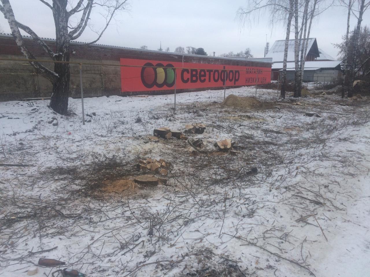 На окраине Екатеринбурга неизвестные вырубили защитную полосу вдоль дороги (ФОТО)