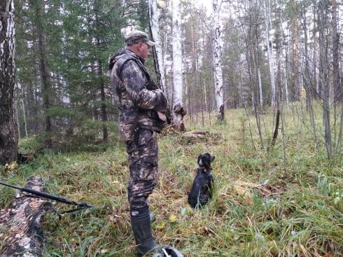 Расцвет браконьерства и разорение охотпользователей