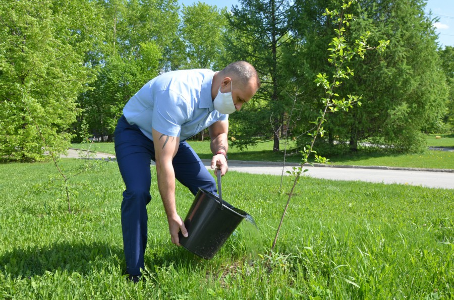 Глава райадминистрации Екатеринбурга проконтролировал сохранность зеленых зон