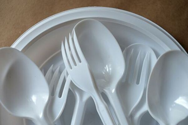 Одноразовая посуда купить в интернет-магазине OZON.ru